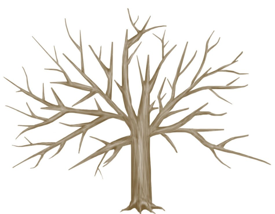brown bare deciduous tree, Drawing