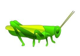 Grasshopper Clip Art drawing