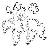 French Poodle dog drawing