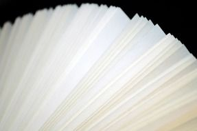 pages of an opened book