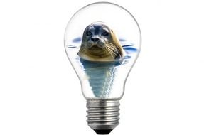 light bulb with seal inside
