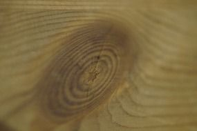 wood knot structure