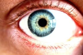 eye blue cornea color macro
