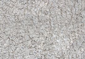 grey color old stone wall texture