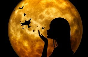 silhouette of woman on background of the moon and the birds