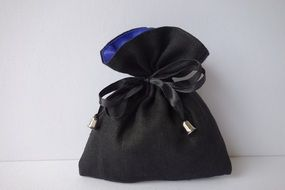 the purse beautician pouch bellows