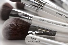 brushes set