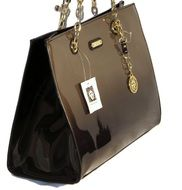 elegant female handbag