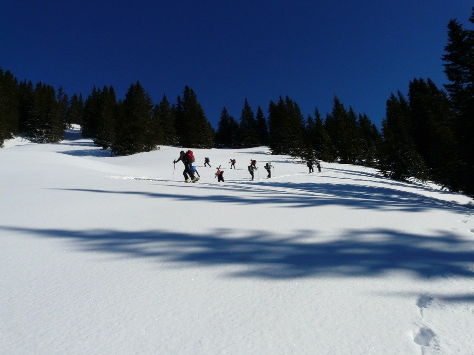 people on ski slope