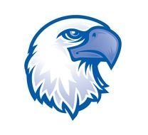 blue Eagle Head Logo drawing