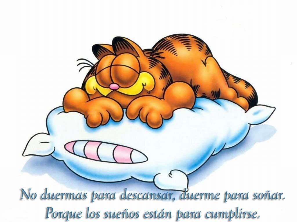 Imagenes Bellas De Garfield Con Frases Amor Free Image