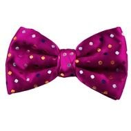Pink violet Bow Tie drawing