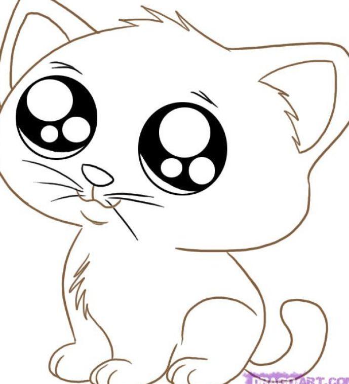 How To Draw Cute Cartoon Cat Drawings Free Image