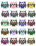 clipart of little owls of different colors