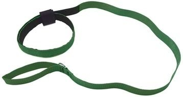 photo of a green collar and a dog leash