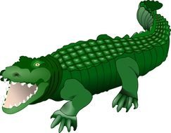 crocodile drawing in computer graphics