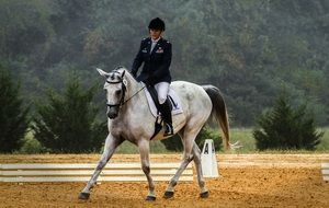 Photo of horse riding competition