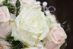 pink and white roses in a bouquet