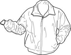 bomber, warm jacket, drawing
