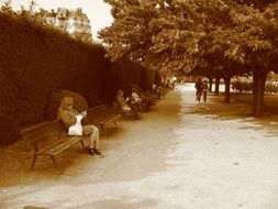 park bench, paris