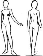 female bodies, sketch