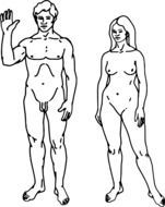 naked man and woman as two figures