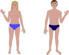 drawn woman and man in blue shorts