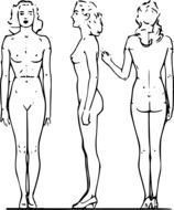 Drawing of female figure from different angles