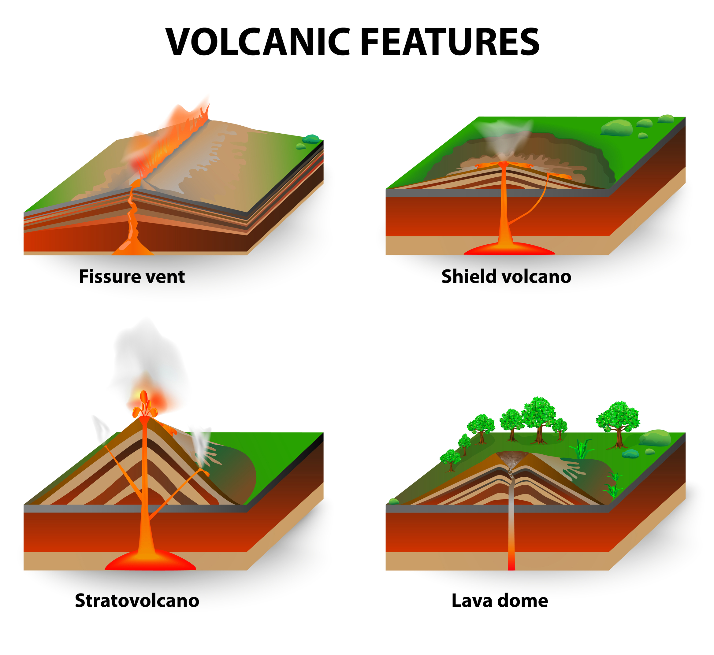 different types of volcanoes When magma erupts at the surface it can form different types of volcanoes depending on the viscosity, or stickiness, of the magma, the amount of gas in the magma, and the way in which the magma reached the surface different types of volcanoes include stratovolcanoes, shield, fissure vents, spatter cones and calderas.