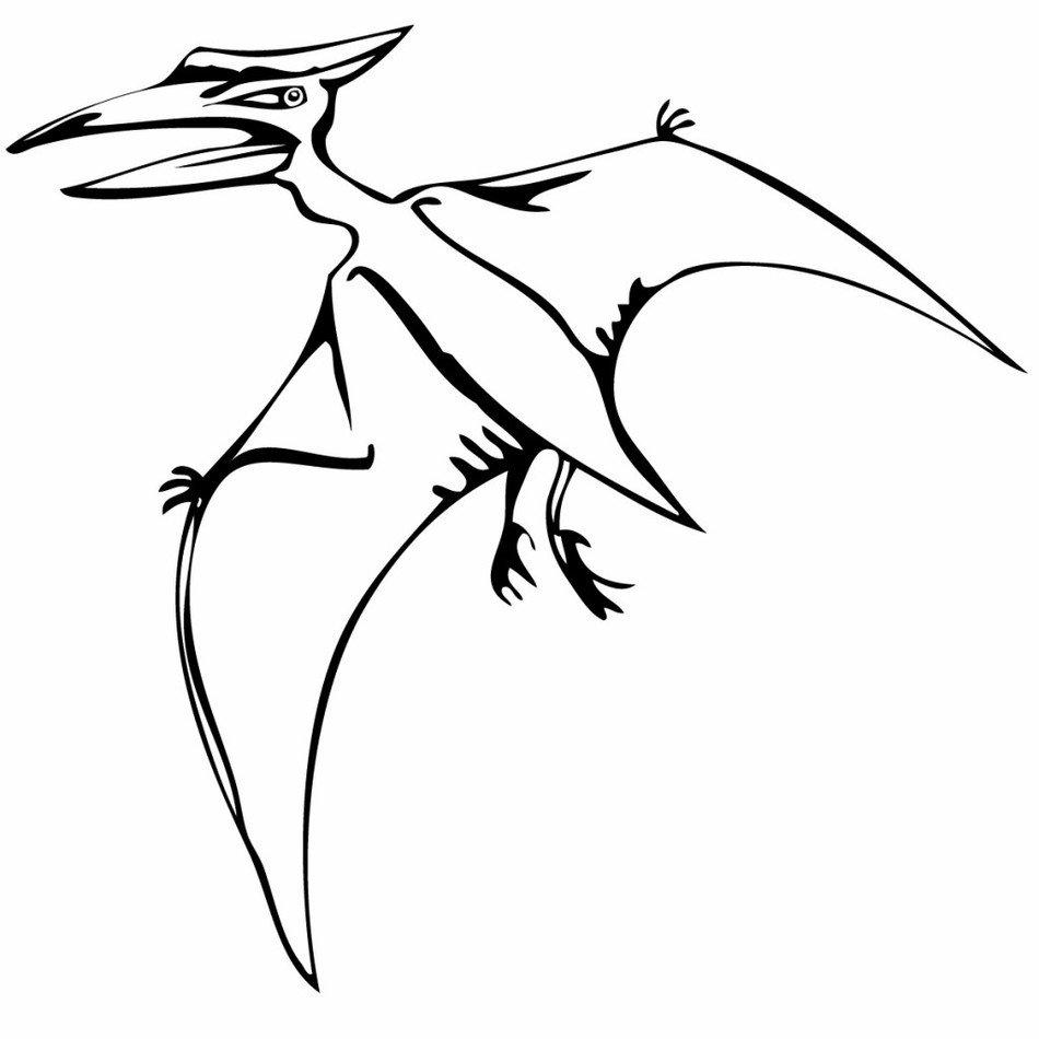раскраска летающие динозавры бледанс добавила, что