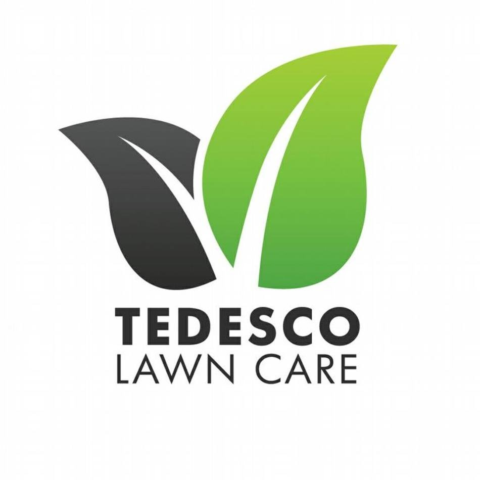 lawn care logos n2