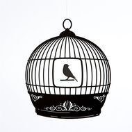 Bird Cage drawing