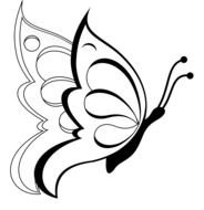 Butterfly Black And White drawing