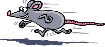 Mouse Running drawing