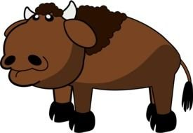 brown Buffalo drawing