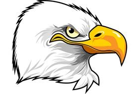 Cartoon Eagle Head drawing