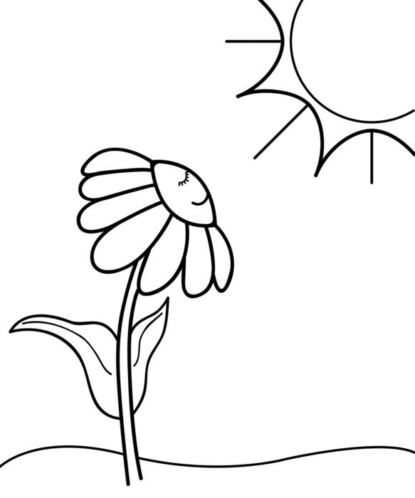 Spring Flowers Clip Art Black And White N5 Free Image