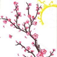 pink Cherry Blossom Drawing