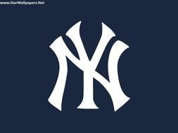New York Yankees Logo N20