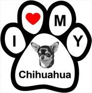 Love My Chihuahua drawing