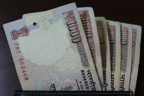 Close up photo of Indian currency