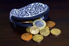coins in a women's wallet