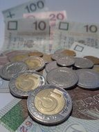 counting euro banknotes and coins