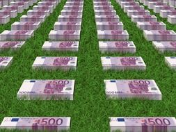 bundles of euro on the green grass