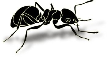 Clipart of Busy ant