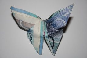 butterfly made of banknotes