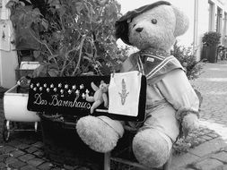 teddy bear with musical instrument in black and white background
