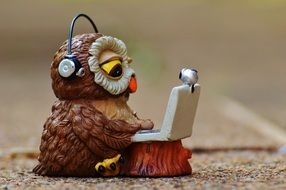 advanced owl is sitting at the computer