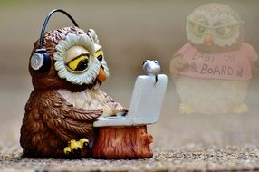 owl listening to music and searching the web