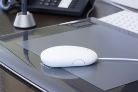 White Apple mouse